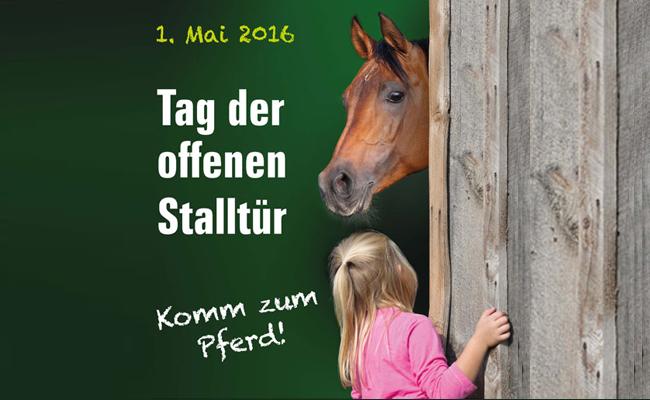 Komm_zum_Pferd
